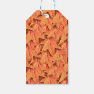 maple leaf in the autumn gift tags