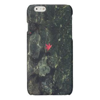 Maple Leaf in Water iPhone 6 Plus Case
