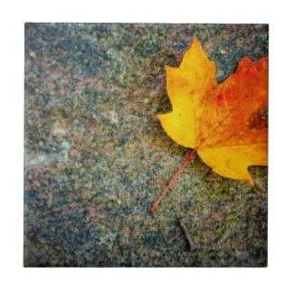 Maple Leaf on Rock Tile