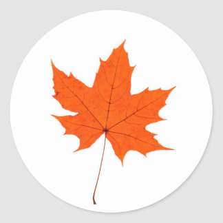 Maple Leave Classic Round Sticker