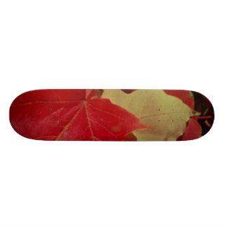 Maple Leaves 20.6 Cm Skateboard Deck