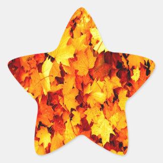 maple leaves autumn harvest print sticker