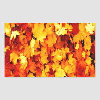 maple leaves autumn harvest print rectangular stickers