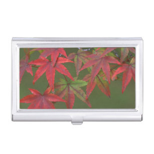 Japan business card holders cases zazzle maple leaves katsura kyoto japan business card holder colourmoves