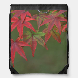 Maple Leaves, Katsura, Kyoto, Japan Drawstring Bag