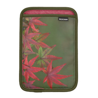 Maple Leaves, Katsura, Kyoto, Japan iPad Mini Sleeve