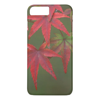 Maple Leaves, Katsura, Kyoto, Japan iPhone 8 Plus/7 Plus Case