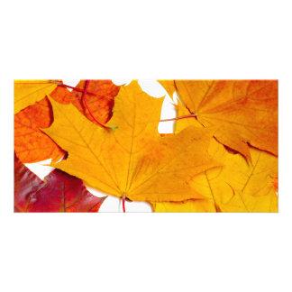 Maple leaves custom photo card