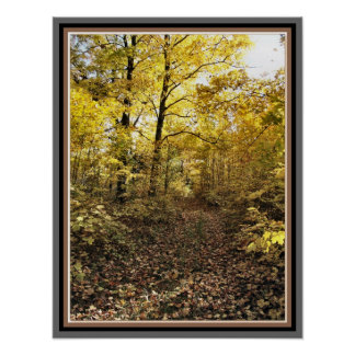 Maple Sugar Bush Path - Fall Eastern Ontario Posters