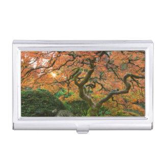 Maple Tree At The Japanese Gardens In Autumn Business Card Holder