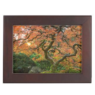 Maple Tree At The Japanese Gardens In Autumn Keepsake Box