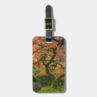 Maple Tree At The Japanese Gardens In Autumn Luggage Tag