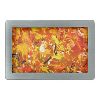 Maple tree autumn leaves belt buckles