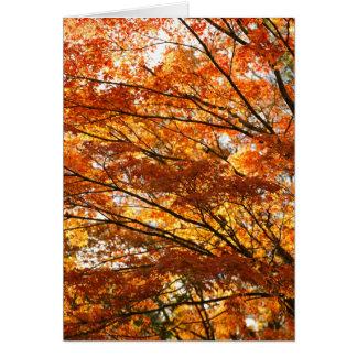 Maple tree foliage card