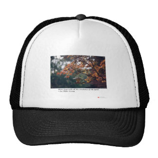 Maple Tree Photography Gifts Tees Collectibles Hats
