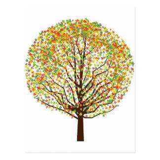 Maple Tree Postcards