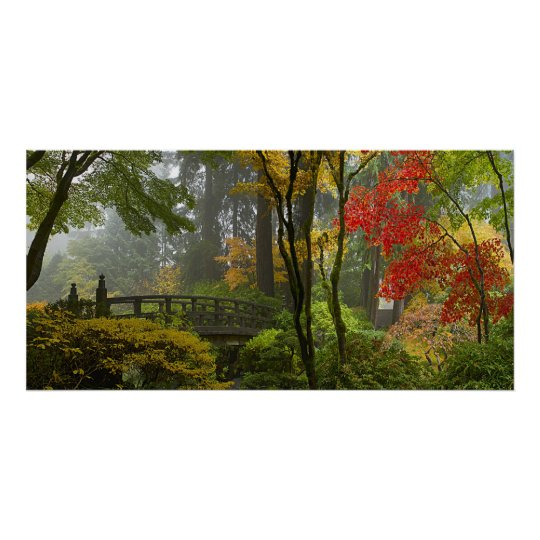 Maple Trees Fall Colours in Japanese Garden Poster
