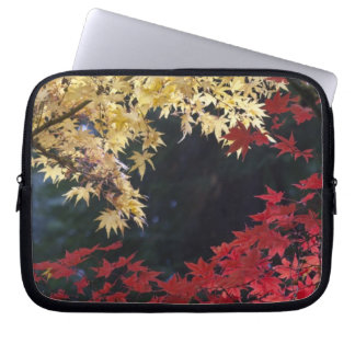 Maple trees in autumn color laptop sleeve