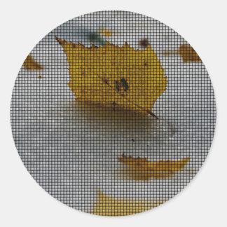 Maple Weaved Round Sticker