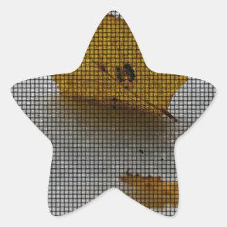 Maple Weaved Star Sticker