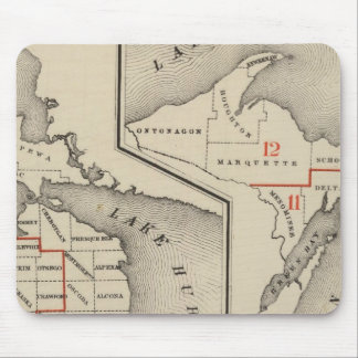 Maps showing the congressional districts mouse mat