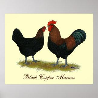 Marans Black Copper Poster