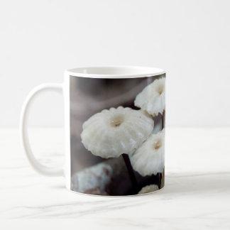 Marasmius rotula Mushroom Mug