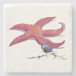 marble coaster tile starfish