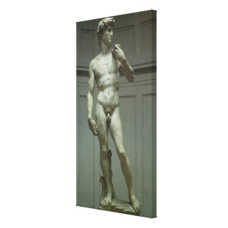 Marble Statue of David by Michelangelo Canvas Print
