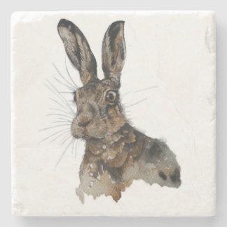 Marble stone coaster hare