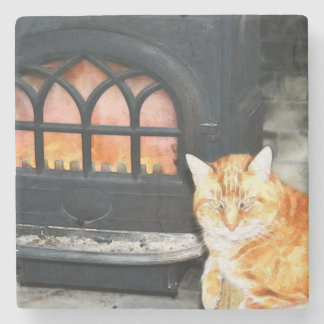 Marble Tabby Cat Coaster