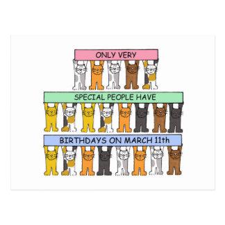 March 11th fun birthday cats. postcard