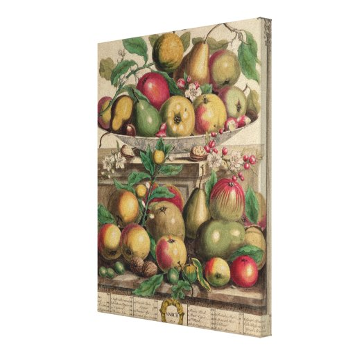 March, from 'Twelve Months of Fruits' Canvas Prints