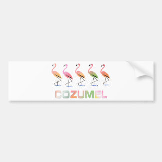March of the Tropical Flamingos COZUMEL Bumper Sticker