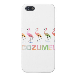March of the Tropical Flamingos COZUMEL iPhone 5 Cases