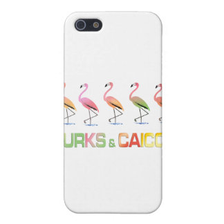 March of the Tropical Flamingos TURKS & CAICOS Case For iPhone 5