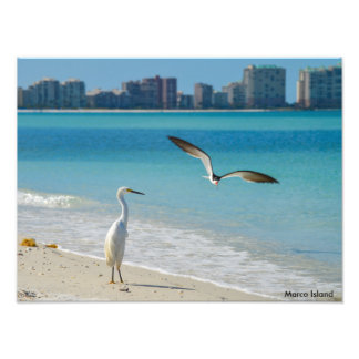 Marco Island Photographic Print