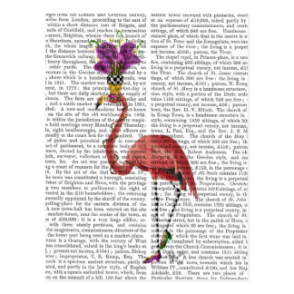 Mardi Gras Flamingo Full Postcard