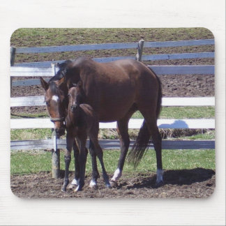 Mare and colt mouse mat