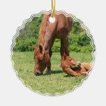 Mare and Colt Ornament