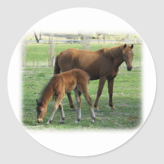 Mare and Foal 9P30D-175 Stickers