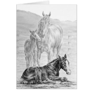 Mare and Foal Horse Drawing by Kelli Swan Card
