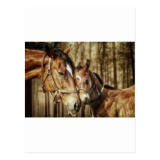 Mare and Foal - Horse Lovers Art Postcard