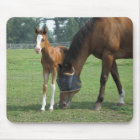 Mare and Foal Mouse Mat
