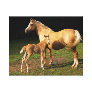 Mare and foal Oil Painting on Canvas Canvas Prints