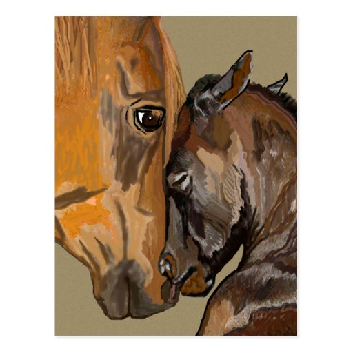 Mare and Foal Post Card