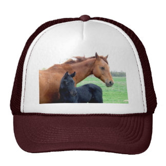 Mare and Her Colt Hats
