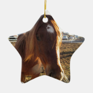 Mare Double-Sided Star Ceramic Christmas Ornament