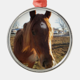 Mare Round Metal Christmas Ornament