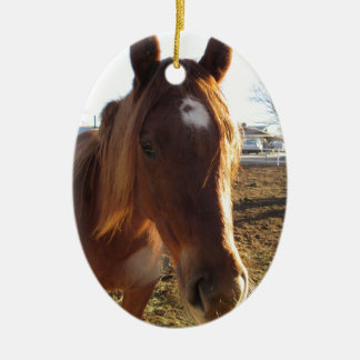 Mare Double-Sided Oval Ceramic Christmas Ornament